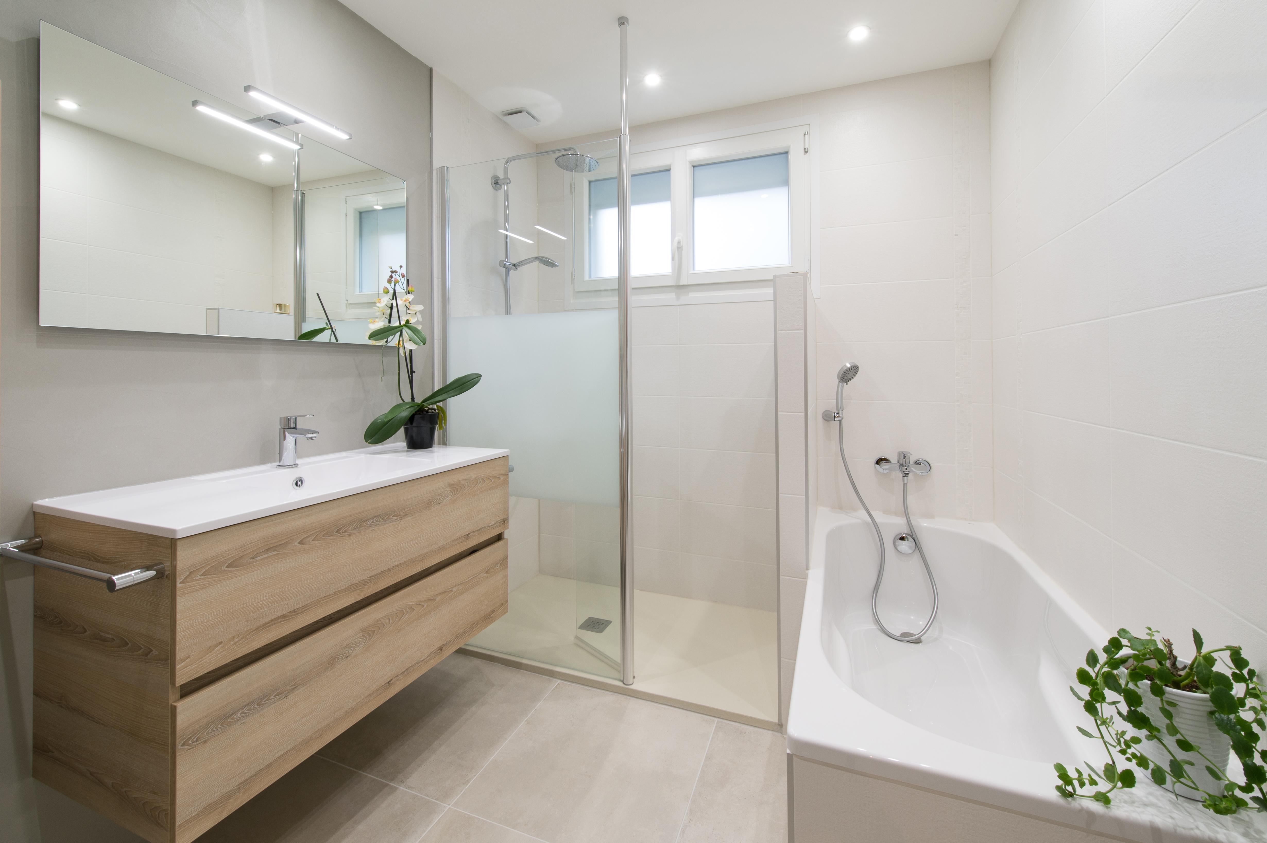 Salle de bains douche et baignoire for Baignoire et douche accolees